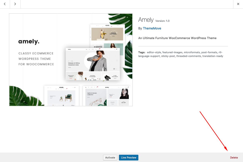 Update Theme - Amely Documentation